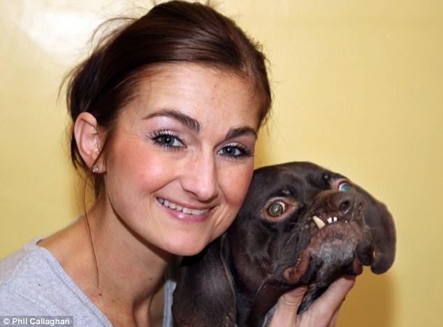 Самый некрасивый пес нашел себе хозяев