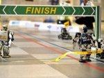 В Японии провели первый марафон роботов