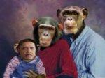 Республиканка из Калифорнии сочла Обаму шимпанзе
