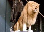 Британские цирки останутся без дрессированных животных