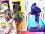 Чихуахуа спас магазин от грабителей