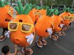 Шествие морковок было организовано ради девушки