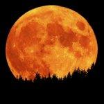 Британец подумал, что луна - НЛО
