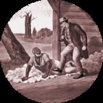 В задачах школы использовалась примеры из рабства