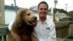 Американцев напугала собака с гривой льва