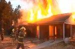 Женщина подожгла змею, змея подожгла её дом