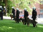 Полицейские залаяли, как собаки, чтобы напугать грабителей