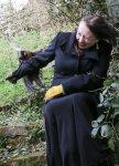 Свирепый фазан терроризируют британскую семью 4 месяца