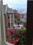 Мужчина построил во дворе статую, чтобы отомстить жене