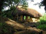 Фермер построил дом из грязи и навоза